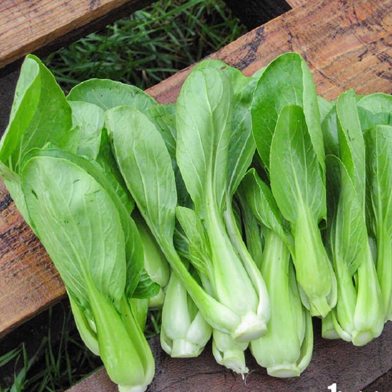 Cách làm rau cải chíp xào nấm hương thơm ngon
