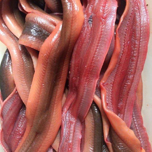 Các cách sơ chế lươn đơn giản