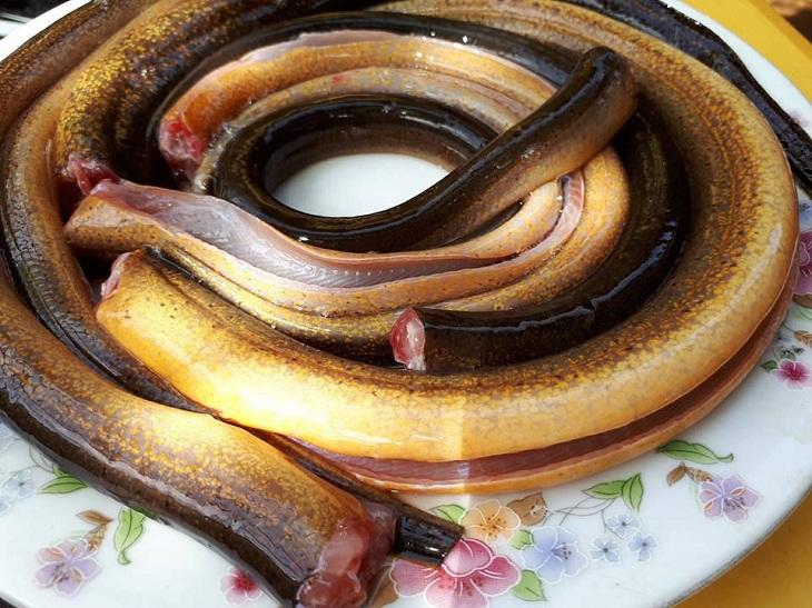 Các cạch làm sạch nhớt lươn